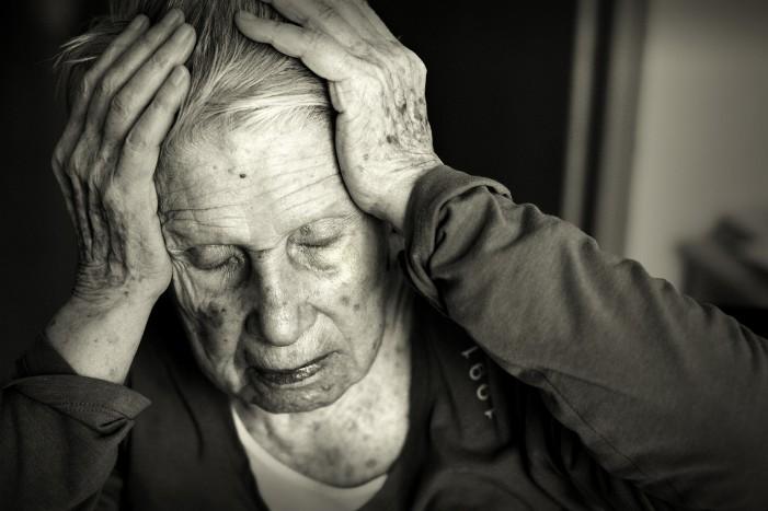 Hlíva a Alzheimerova nemoc