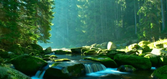 Očištění odpadní nemocniční vody od chemoterapeutik díky Coriolu