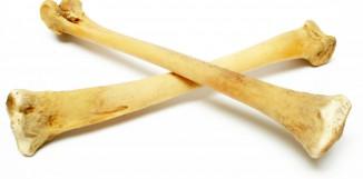 Cordycesp ovlivňuje i kostní tkáň