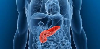 Reishi a chronická pankreatitida